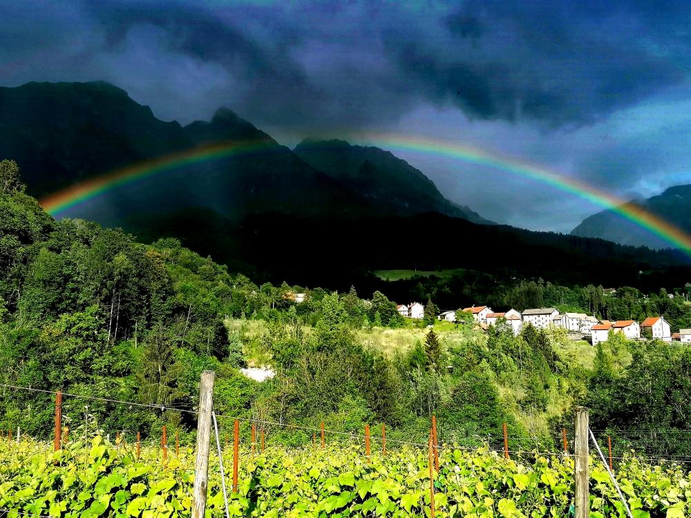 vigna con arcobaleno (1)